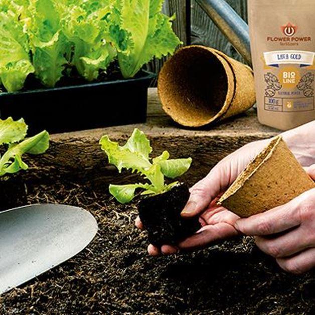 Imagen para la categoría Tipos de fertilizante