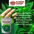 Picture of Flower Power Foliar (spray) Fertilizer Basic Line