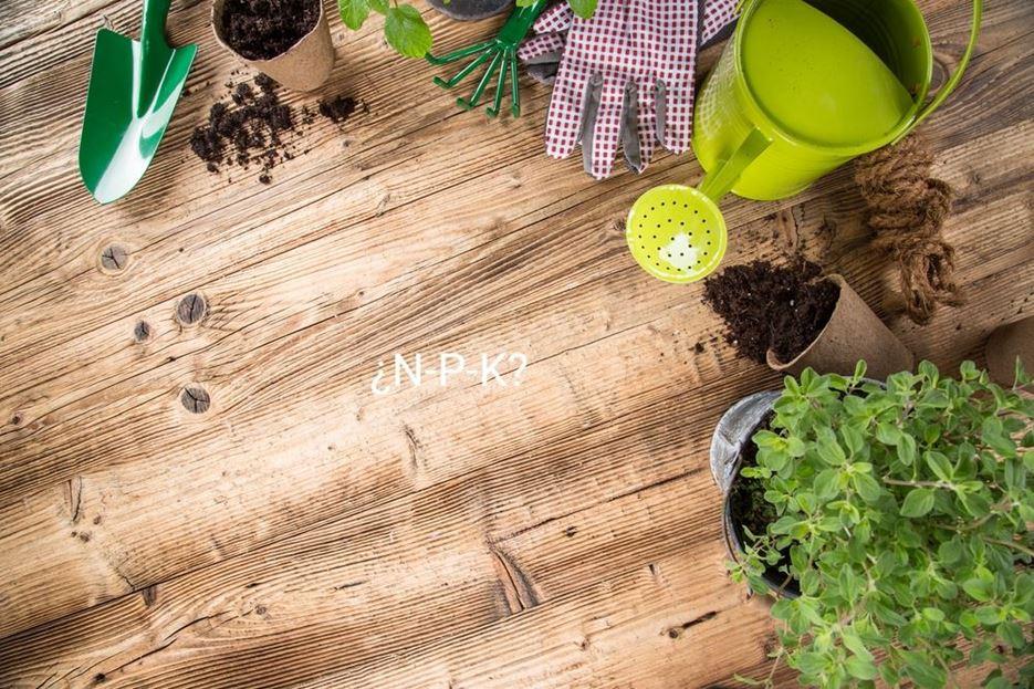 Fertilización (N-P-K-Mg.)  ¿Qué significa? ¿Qué es?