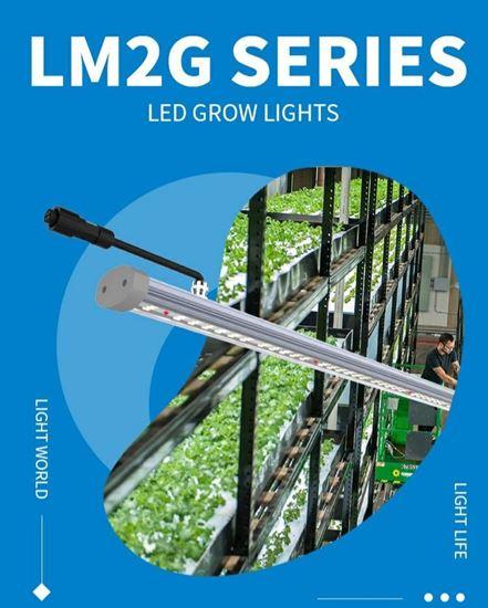 Imagen de Iluminacion Led Osram  LM16 130W FSG 2,5 umol/j para crecer set completo